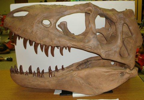 dinodaysskull